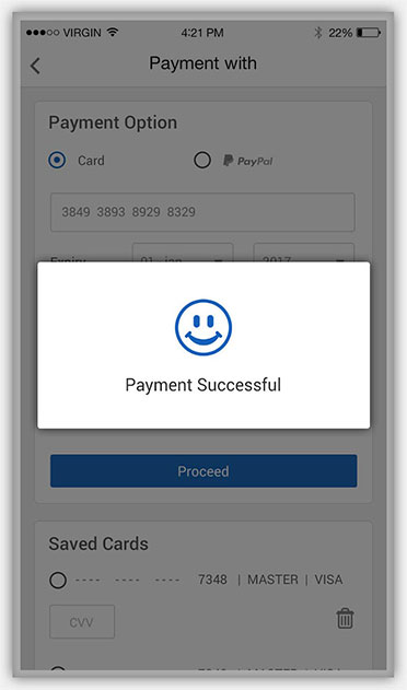 Payment successful mode